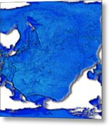Dolphin World Map Metal Print