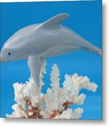 Dolphin On Coral Metal Print