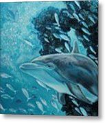 Dolphin With Small Fish Metal Print