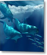 Dolphin World Metal Print by Corey Ford