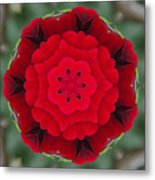 Don Juan Rose Poppies Kaleidoscope Metal Print
