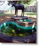 Donkey Fountain Metal Print