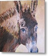 Donkey In The Sunlight Metal Print