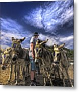Donkey Rides Metal Print