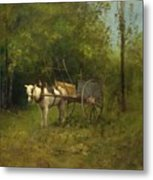 Donkey With Cart Metal Print