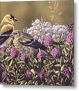 Don't Bug Us - Goldfinches Monarch Butterfly Metal Print