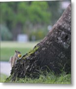 Don't Look While I Hide It Metal Print