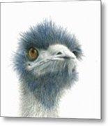 Dont Mess With Emu Metal Print