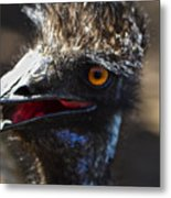 Dont Mess With The Emu Metal Print