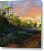 Donup Road Metal Print