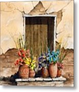 Door With Flower Pots Metal Print