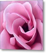 Doorway Of Rose Metal Print