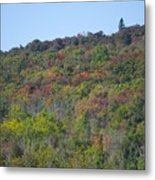 Dots Of Fall Colors Metal Print