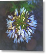 Dotted Light Metal Print