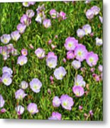 Dotted Meadow Metal Print