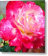 Double Delight Metal Print