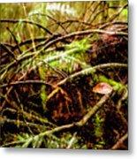 Double Rainforest Metal Print