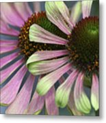 Double Vision Cone Metal Print