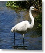 Down By The River Metal Print