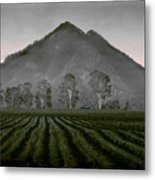 Down From The Mountain Metal Print