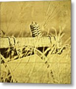 Down On The Farm Metal Print by Tom Mc Nemar
