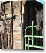 Down On The Ranch Metal Print