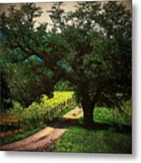 Down The Lane Metal Print