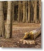 Down Tree Metal Print