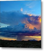 Downpour  Metal Print