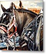 Draft Mules Metal Print