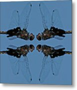Dragonfly Composite Color Metal Print