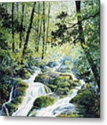 Dragonfly Creek Metal Print