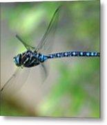 Dragonfly In Flight 2 Metal Print