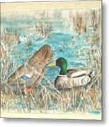 Drake And Hen Metal Print