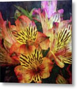Dramatic 1536 Idp_2 Metal Print