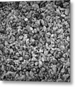 Dramatic Black And White Petals On Stones Metal Print