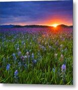 Dramatic Spring Sunrise At Camas Prairie Idaho Usa Metal Print
