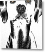 Drawing Of A Dalmatian Dog Metal Print