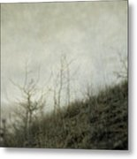 Dream 3 Metal Print