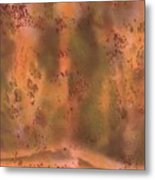 Dream Existence Two Metal Print