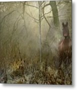 Dream Forest Metal Print by Dorota Kudyba
