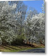 Dreamin' Of A White Spring No.5 Metal Print