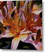 Dreaming Of Lilies 5 Metal Print