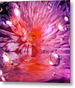 Dreams 3 Chrysanthemum Metal Print