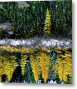Dreams Of A Young Tamarack Metal Print