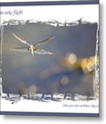 Dreams Take Flight Poster Or Card Metal Print