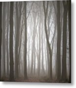 Dreamscape Forest Metal Print