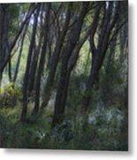 Dreamy Marjan Forest In Croatia Metal Print