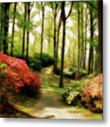 Dreamy Path Metal Print