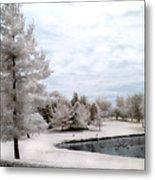 Dreamy Surreal Infrared Pond Landscape Nature Scene  Metal Print